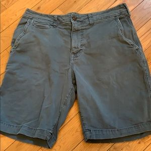American Eagle Outfitters Flat Front Shorts